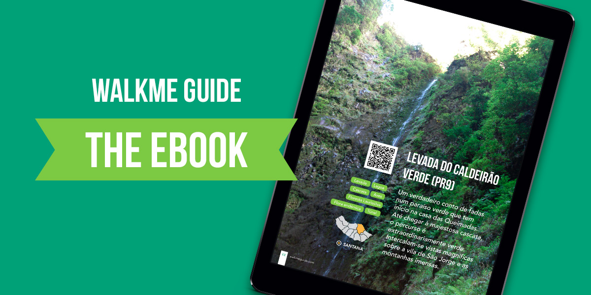 Walkme Guide eBook